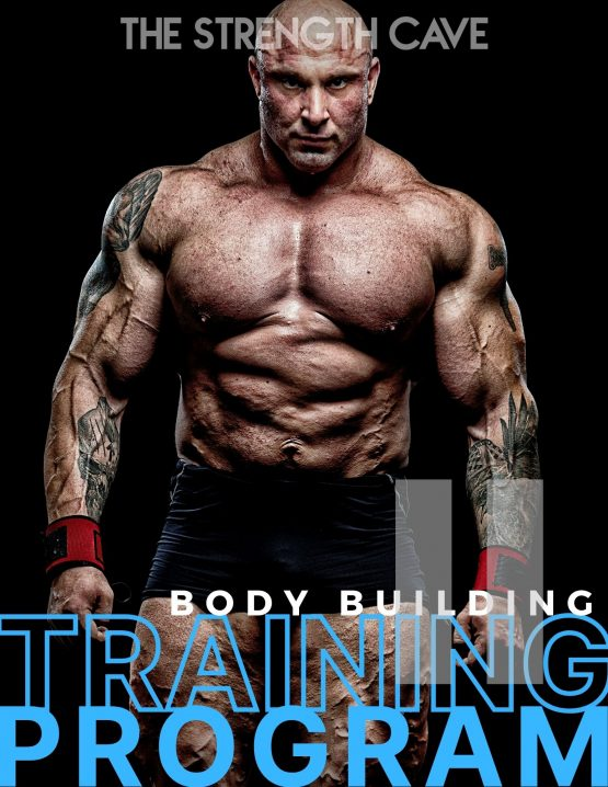 bodybuilding 2 training program