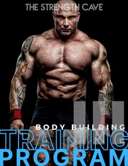 bodybuilding 3 training program