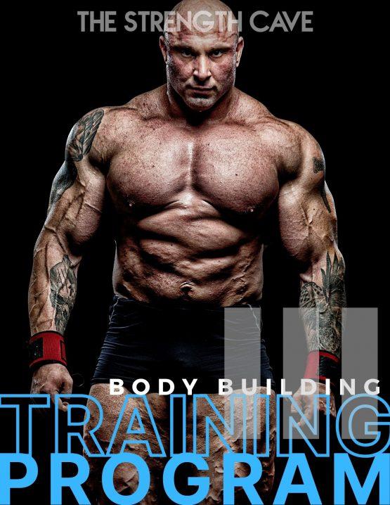 bodybuilding 3 training program