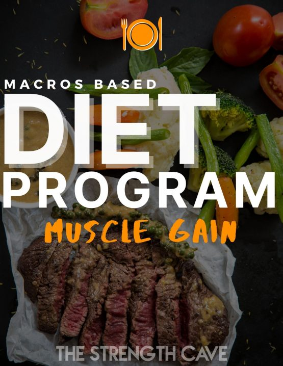 macros based muscle gain diet program